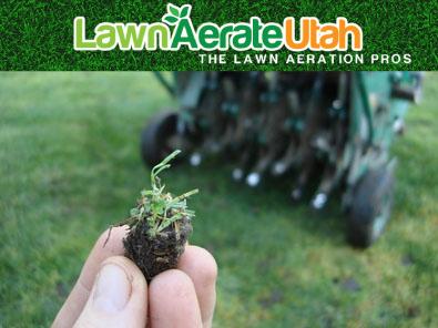 LawnAerate1