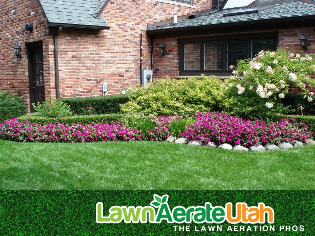LawnAerate3