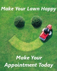 Aerate Lawn – Make Your Appointment